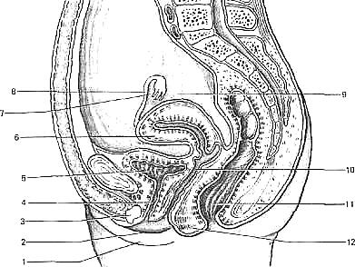 Способы уменьшение размера и входа во влагалище